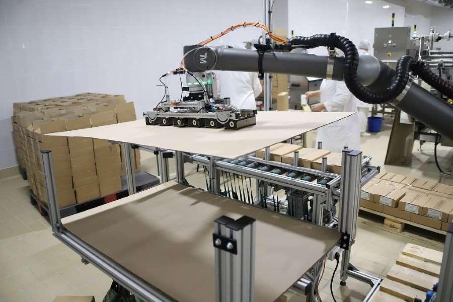 Робот манипулятор TM robot и захват индивидуальный SIA. Укладка прокладочного листа.